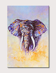 cheap -Oil Painting Hand Painted Abstract Animals Modern Stretched Canvas With Stretched Frame