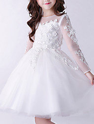 cheap -A-Line Knee Length First Communion Flower Girl Dresses - Cotton Long Sleeve Jewel Neck with Appliques