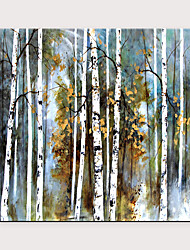 cheap -Handmade Oil Painting On Canvas Abstract Landscape Wall Art White Birch Forest Scenery Artwork