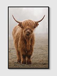Недорогие -Отпечаток в раме Холст в раме С принтом - Животные Полистирен Фотографии Предметы искусства