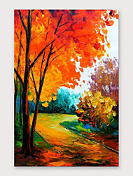 cheap -IARTS®Hand Painted Beautiful road Oil Painting   with Stretched Frame For Home Decoration