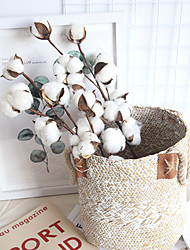 cheap -Real Cotton Home Decoration Wedding ins Air Dried Flower Home Decoration