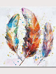 cheap -Hand Painted Colorful Feather Theme Art Wall Decoration Large Oil Painting Wall Painting Modern Art Home Decoration