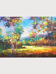 Недорогие -ручная роспись холст масляные краски впечатление пейзаж украшения дома с рамкой картины готовы повесить