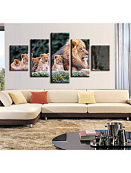 cheap -5 Pieces Printing Decorative Painting  Oil Painting  Home Decorative Wall Art Picture Paint on Canvas Prints Animals Pets