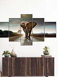 cheap -Print Rolled Canvas Prints - Animals Cartoon Vintage Traditional Five Panels Art Prints