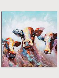 Недорогие -ручная роспись холст масляные краски абстрактные животные ножом украшения дома с рамкой картины готовы повесить