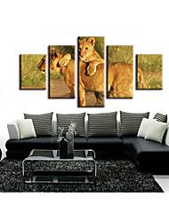 cheap -5 Pieces Printing Decorative Painting  Oil Painting  Home Decorative Wall Art Picture Paint on Canvas Prints Landscape Animals