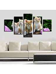 cheap -5 Pieces Printing Decorative Painting  Oil Painting  Home Decorative Wall Art Picture Paint on Canvas Prints  Animals Floral