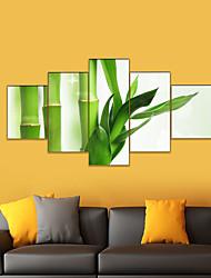 Недорогие -AMJ горячей продажи искусства бамбука пять картин гостиной диван фон отделка стен холст картины бескаркасных живописи ядро