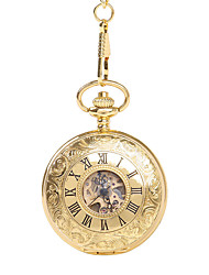 cheap -Unisex Pocket Watch Mechanical manual-winding Casual Hollow Engraving Analog Gold / Titanium Alloy