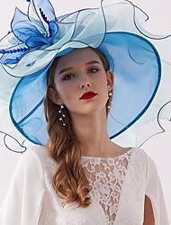 Недорогие -Жен. Классический Шляпа от солнца Сетка,Однотонный Лиловый Розовый Красный