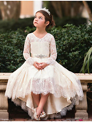 cheap -Ball Gown Asymmetrical Wedding Flower Girl Dresses - Lace Long Sleeve V Neck with Bow(s) / Appliques / Solid