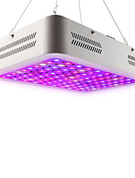 cheap -1pc 80 W 10115.7 lm 100 LED Beads Cute Full Spectrum Easy Install Growing Light Fixture Red 85-265 V Vegetable Greenhouse