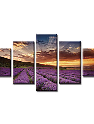 cheap -5 Panels Modern Canvas Prints Painting Home Decor Artwork Pictures Decor Print Rolled Stretched Modern Art Prints Modern Art Prints