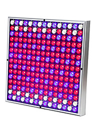 cheap -Grow Light LED Plant Growing Light LED 85-265V 30W 230 lm 225 LED Beads Easy Install Tri-color Growing Home Office Vegetable Greenhouse