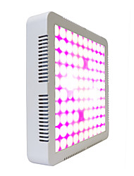 cheap -Grow Light LED Plant Growing Light 300 W 3800 lm 100 LED Beads Growing Light Fixture 85-265 V