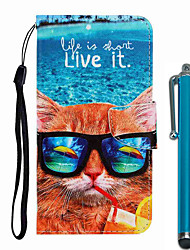cheap -Case For Apple iPhone 11 / iPhone 11 Pro / iPhone 11 Pro Max Wallet / Card Holder / with Stand Full Body Cases Cat PU Leather / TPU