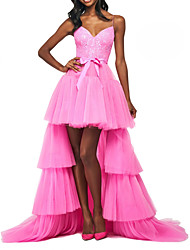 cheap -A-Line Sexy Pink Prom Formal Evening Dress Spaghetti Strap Sleeveless Sweep / Brush Train Tulle with Tier Lace Insert 2020