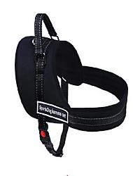Недорогие -Грызуны Собаки Ремни Дышащий Регулируемый размер На каждый день Безопасность Для активного образа жизни Прогулки Терилен Нейлон Синий Черный