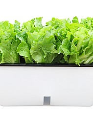 cheap -Balcony Vegetable Pot Strawberry Potted Plastic Self-absorbent Flower Pot Outdoor Hydroponic Vegetable Home Garden Rectangular Flower Trough