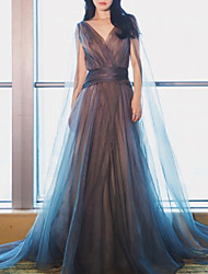 cheap -A-Line Minimalist Blue Engagement Formal Evening Dress V Neck Sleeveless Floor Length Tulle with Pleats 2020
