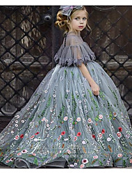 cheap -Ball Gown Sweep / Brush Train Wedding Flower Girl Dresses - Tulle Short Sleeve Jewel Neck with Appliques