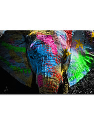 cheap -Print Rolled Canvas Prints - Animals Still Life Modern Art Prints Colorful Elephant Canvas Painting Wild Animal Poster Painting Wall Art Cuadros for Living Room Wall Decor Pictures Posters