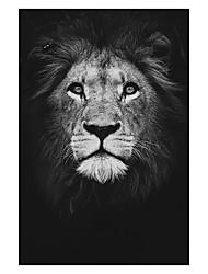 Недорогие -печать рулонных отпечатков на холсте - животные натюрморт современные репродукции животных стены искусства черно-белый лев зебра слон плакат живопись искусство графика cuadros украшение дома для