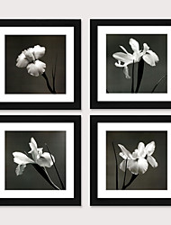 cheap -Framed Art Print Framed Set Modern of Contemporary Contracted Black And White Flower Study Bedroom Dining-Room Ready to Hang