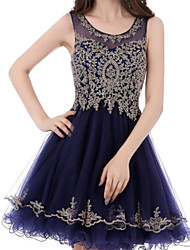 cheap -A-Line Flirty Sparkle Homecoming Cocktail Party Dress Jewel Neck Sleeveless Short / Mini Lace Tulle with Appliques 2020