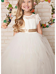cheap -A-Line Floor Length Party / Wedding Flower Girl Dresses - Lace / Satin / Tulle Cap Sleeve Jewel Neck with Solid
