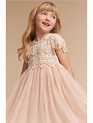 cheap -A-Line Knee Length Wedding / Party Flower Girl Dresses - Lace / Tulle Cap Sleeve Jewel Neck with Solid