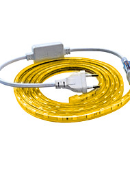 cheap -2M LED Light Strips Flexible Tiktok Lights 120 leds SMD 5050 Wateproof Warm White Cold White IP65(EU Plug , AC 220V)