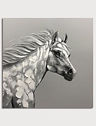 cheap -Hand Painted Canvas Oilpainting Abstract Horse Home Decoration with Frame Painting Ready to Hang