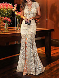 cheap -Mermaid / Trumpet Floral Sexy Engagement Formal Evening Dress V Neck Sleeveless Sweep / Brush Train Lace with Split 2020