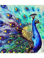 cheap -Frameless Peacock Animals DIY Painting By Numbers Kits Acrylic Paint By Numbers Home Wall Art Decor Unique Gift