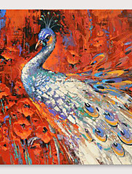 cheap -IARTS Hand Painted Beautiful peacock Oil Painting with Stretched Frame For Home Decoration With Stretched Frame
