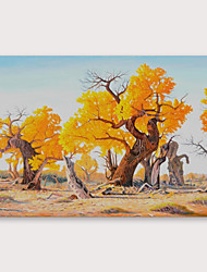 cheap -IARTS Hand Painted Art tree Oil Painting with Stretched Frame For Home Decoration With Stretched Frame