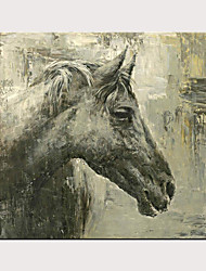 cheap -Hand Painted Modern Horse Oil Painting on Canvas Handmade Abstract Animal Wall Art for Decor