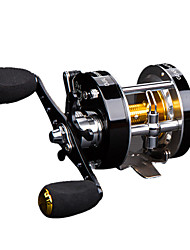 cheap -Fishing Reel Drum Reel Gear Ratio Ball Bearings Right-handed / Left-handed Sea Fishing / Freshwater Fishing / Trolling & Boat Fishing