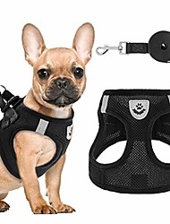 cheap -puppy harness and leash set - soft mesh dog vest harness, reflective & adjustable harness for small to medium dogs, cats and puppies