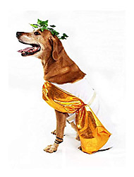 cheap -toga dog costume (large)