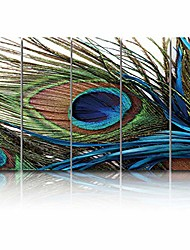 cheap -5 panels canvas wall art prints peacock feathers painting bird plume painting on canvas modern artwork large poster ready to hang for living room bedroom office home decor - 16x40 inchx5