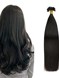 cheap -Fusion / U Tip Hair Extensions Human Hair 1pack Pack Straight Black Blonde Hair Extensions