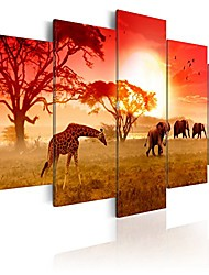 "cheap -framed african canvas painting animal giraffe and elephant wall decor art modern 5 piece landscape sunset picture artwork for living room ready to hang (sunny colours of africa, 40""x 20"")"