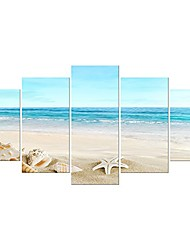 cheap -sea shells canvas prints modern seascape artwork landscape pictures paintings on stretched canvas wall art for home decor extra large