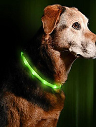 cheap -led dog necklace collar - usb rechargeable loop - available in 6 colors - makes your dog visible, safe & seen