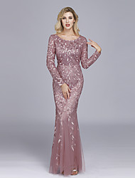 cheap -Mermaid Trumpet Elegant Empire Party Wear Formal Evening Dress Jewel Neck Long Sleeve Floor Length Tulle with Embroidery 2020