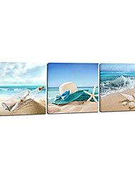 cheap -3 piece starfish seashell bottle beach pictures paintings on canvas prints wall art work for living room home office decorations large modern gallery wrapped seascape seaview artwork